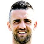 Vedad Ibišević headshot