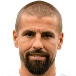 Milan Baroš headshot